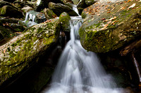 Water - Great Smoky Mountains National Park